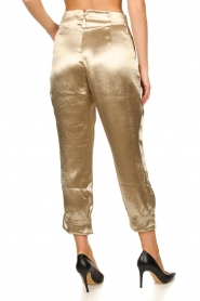 Rabens Saloner    Metallic pants Anya   gold    Picture 6