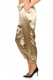 Rabens Saloner    Metallic pants Anya   gold    Picture 5
