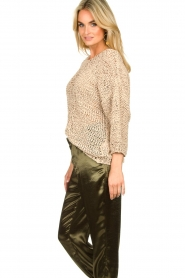 Rabens Saloner |  Chunky knitted sweater Delhlia | camel  | Picture 5