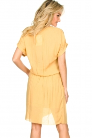 Rabens Saloner |  Dress with pleats Kiara | yellow  | Picture 6