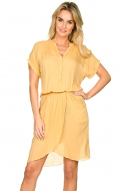Rabens Saloner |  Dress with pleats Kiara | yellow  | Picture 4