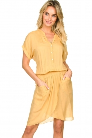 Rabens Saloner |  Dress with pleats Kiara | yellow  | Picture 2