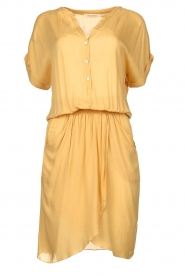 Rabens Saloner |  Dress with pleats Kiara | yellow  | Picture 1