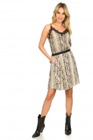 Set |  Snake printed skirt Jule | animal  | Picture 3