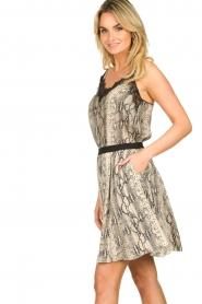 Set |  Snake printed skirt Jule | animal  | Picture 4