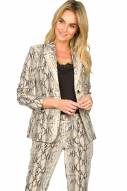Set |  Snake printed blazer Mo | animal  | Picture 2