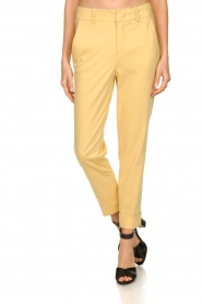 Set |  Trousers with striking seams Nathalie | yellow  | Picture 2