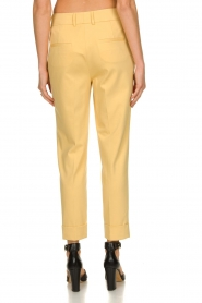 Set |  Trousers with striking seams Nathalie | yellow  | Picture 5