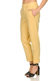 Set |  Trousers with striking seams Nathalie | yellow  | Picture 4