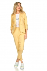 Set |  Trousers with striking seams Nathalie | yellow  | Picture 6