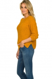 Knit-ted |  Knitted sweater Pleun | orange  | Picture 5