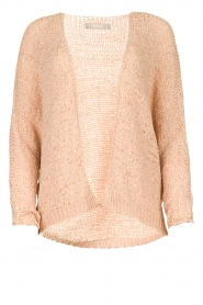 Blaumax |  Knitted cardigan Paola | nude  | Picture 1