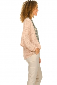 Blaumax |  Knitted cardigan Paola | nude  | Picture 5