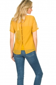 Fracomina |  Luxe top Leila | yellow  | Picture 6