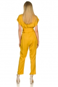 Fracomina |  Jumpsuit Lusiana | yellow  | Picture 5