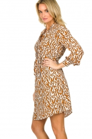 Dante 6 |  Printed dress Rousset | brown   | Picture 4