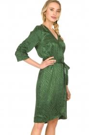 Dante 6 |  Wrap dress Hayden | green  | Picture 4