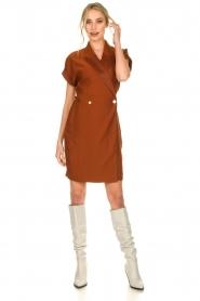 Dante 6 |  Smoking dress Le saint | brown  | Picture 3