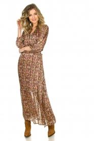 Dante 6 |  Printed maxi dress Bardon | multi  | Picture 2
