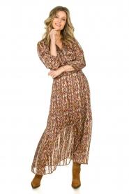Dante 6 |  Printed maxi dress Bardon | multi  | Picture 3