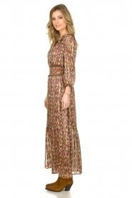 Dante 6 |  Printed maxi dress Bardon | multi  | Picture 4