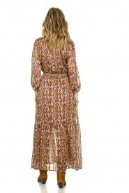 Dante 6 |  Printed maxi dress Bardon | multi  | Picture 5