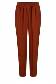 Dante 6 |  Trousers Bowie | brown  | Picture 1