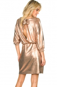 Dante 6 | Metallic jurk Virginie | metallic   | Afbeelding 5