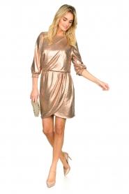 Dante 6 | Metallic jurk Virginie | metallic   | Afbeelding 3