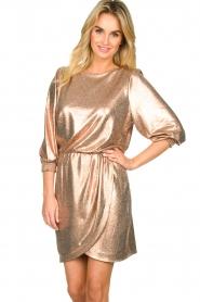 Dante 6 | Metallic jurk Virginie | metallic   | Afbeelding 2