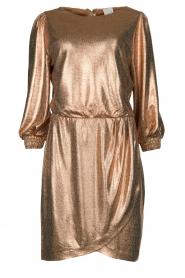 Dante 6 | Metallic jurk Virginie | metallic   | Afbeelding 1