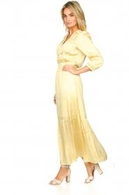 Dante 6 |  Satin midi dress Bardon | yellow  | Picture 4