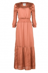Dante 6 |  Midi dress Bardon | pink  | Picture 1