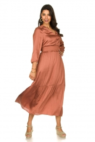 Dante 6 |  Midi dress Bardon | pink  | Picture 4