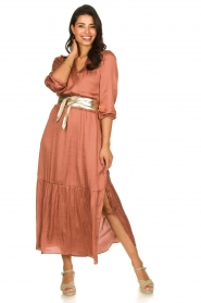 Dante 6 |  Midi dress Bardon | pink  | Picture 3
