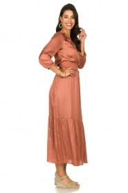 Dante 6 |  Midi dress Bardon | pink  | Picture 5