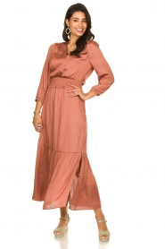 Dante 6 |  Midi dress Bardon | pink  | Picture 2