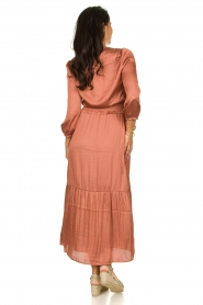 Dante 6 |  Midi dress Bardon | pink  | Picture 6