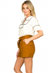 Dante 6 |  Linen shorts Ming | brown  | Picture 4