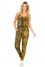 Dante 6 |  Leopard pants Verdict | black  | Picture 6
