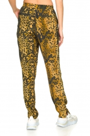 Dante 6 |  Leopard pants Verdict | black  | Picture 5