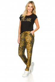 Dante 6 |  Leopard pants Verdict | black  | Picture 3