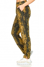 Dante 6 |  Leopard pants Verdict | black  | Picture 4
