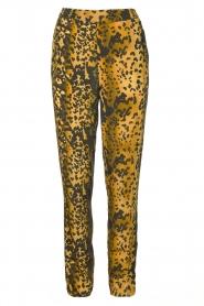 Dante 6 |  Leopard pants Verdict | black  | Picture 1