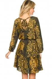 Dante 6 |  Leopard dress Kirstyn | green  | Picture 5