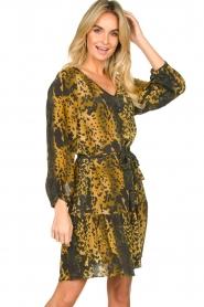Dante 6 |  Leopard dress Kirstyn | green  | Picture 2
