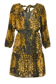 Dante 6 |  Leopard dress Kirstyn | green  | Picture 1