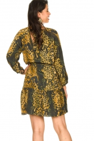 Dante 6 |  Leopard dress Kirstyn | green  | Picture 6