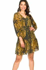 Dante 6 |  Leopard dress Kirstyn | green  | Picture 2