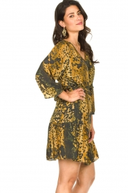 Dante 6 |  Leopard dress Kirstyn | green  | Picture 5